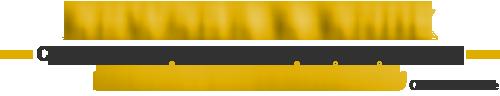 Header Blog Banner